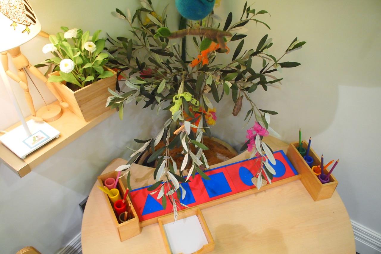 Cedars Montessori